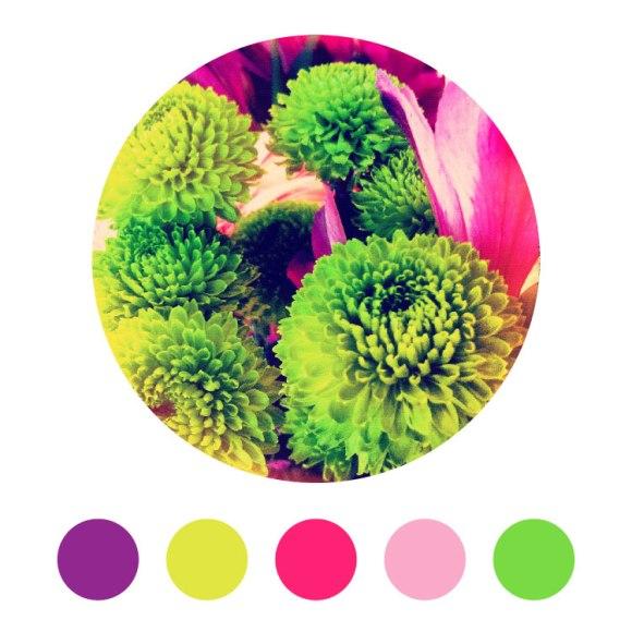 002-Color-Theme