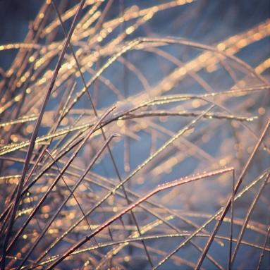 amanda-kay-photo-001