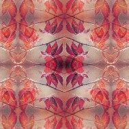 00377-pattern