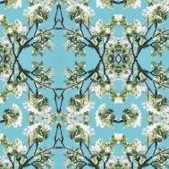 00381-pattern